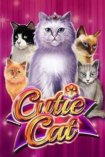Cutie Cat kostenlos spielen Slot